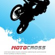 Vector motocross — Stock Vector #38943775