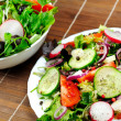 Plate with salad - Stock Photo