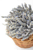 Lavander in a basket — Stock Photo