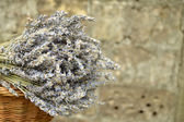 Bouquet of lavender lying on a brick wall — Stockfoto