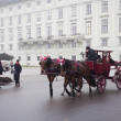 Carriage ridding on the streets of Vienna, Austia - Stock Photo
