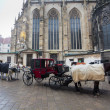 Carriage in front of Cathedral Saint Stefan in Vienna - Stock Photo