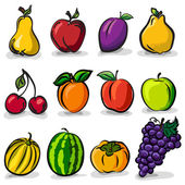 Temperate fruits sketch drawing vector set — Stock Vector