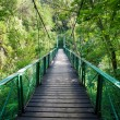 Suspended bridge in Cheile Turzii — Stock Photo