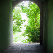 Ancient way out trough nature — Stock Photo