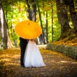 Stock Photo: Young married couple in love kissing under umbrella