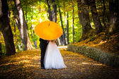 Young married couple in love kissing under umbrella — Stock Photo