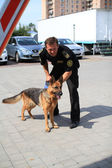 Dog handlers are trained in the customs dogs to look for drugs and weapons — Stock Photo