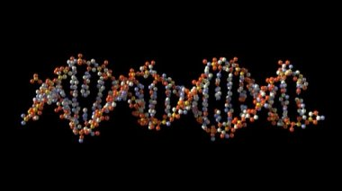 Roterande dna — Stockvideo