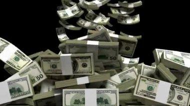 Earning money — Stock Video