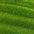 Stock Video: Slowly waving grassy background, seamless looped 3d animation