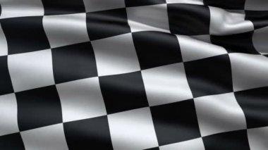 Ondeando la bandera de la raza, sin fisuras bucle Animación 3d — Vídeo de Stock