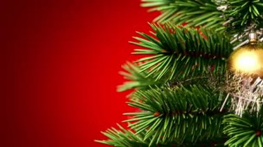 Beautiful Christmas tree background — Stock Video