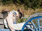 Dummy on a wagon — Stock Photo