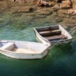Two Rowboats — Stock Photo #19090829