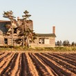 Abandon house behind a farmer's field in canada — Stock Photo