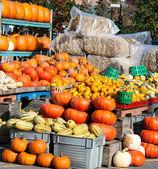 Farmer's market — Stock Photo