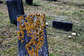 Abandon Grave stone — Stock Photo