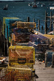 Lobster Traps Maine — Photo