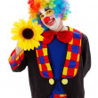 Clown with big yellow flower — Stock Photo #22303239