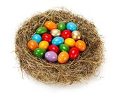 Lots of colorful eggs in nest — Stock Photo