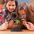 Teacher and pupils in biology class — Stock Photo