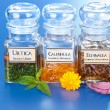 Stok fotoğraf: Various plant extract in bottles and homeopathic medication