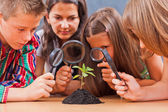 Teacher and pupils in biology class — Stockfoto