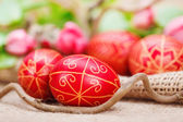 Handmade painted Easter eggs — Stock Photo