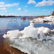 Big chunk of ice in river — Stock Photo #13779567