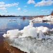Big chunk of ice in the river — Stock Photo