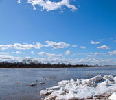 The river and ice — Stock Photo