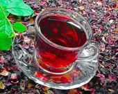 透明杯芙蓉茶 — 图库照片