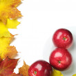 Background with red apples — Stock Photo
