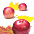 Red apples and autumn leaves — Stock Photo