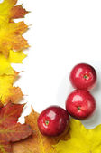 Background with red apples — Stock fotografie
