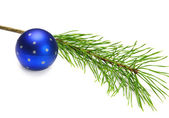 Blue Christmas ball and pine branch — Stock Photo