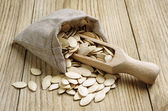 Pumpkin seeds in a sack — Stock fotografie