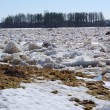 Stock Photo: Drifting ice in spring