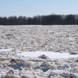 Landscape with drifting ice — Stock Photo