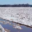 Ice drift on the river — Stock Photo