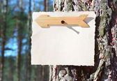 Wooden arrows sign and note paper on a tree — Stock Photo