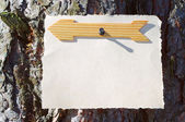 Wooden arrows sign on a tree — Stock Photo