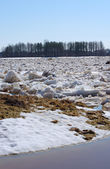 Drifting ice in the spring — Stock Photo