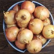 Self grown onions in a bowl — Stock Photo