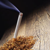 Lit cigarette and tobacco — Foto Stock