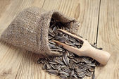 Sunflower seeds in a sack — Stock Photo