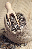 Sunflower seeds in a sack — Foto de Stock