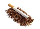 タバコとタバコ — ストック写真