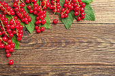 Background with red currants — Stock Photo